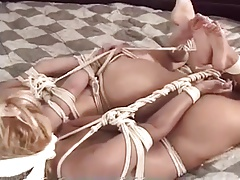 two naked hogtied girls
