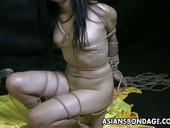 Bound bitch is bdsm treated..
